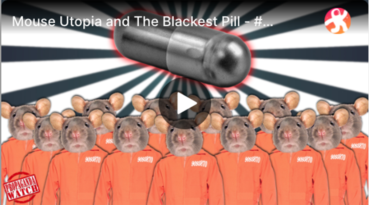 Mouse Utopia and The Blackest Pill | The Corbett Report